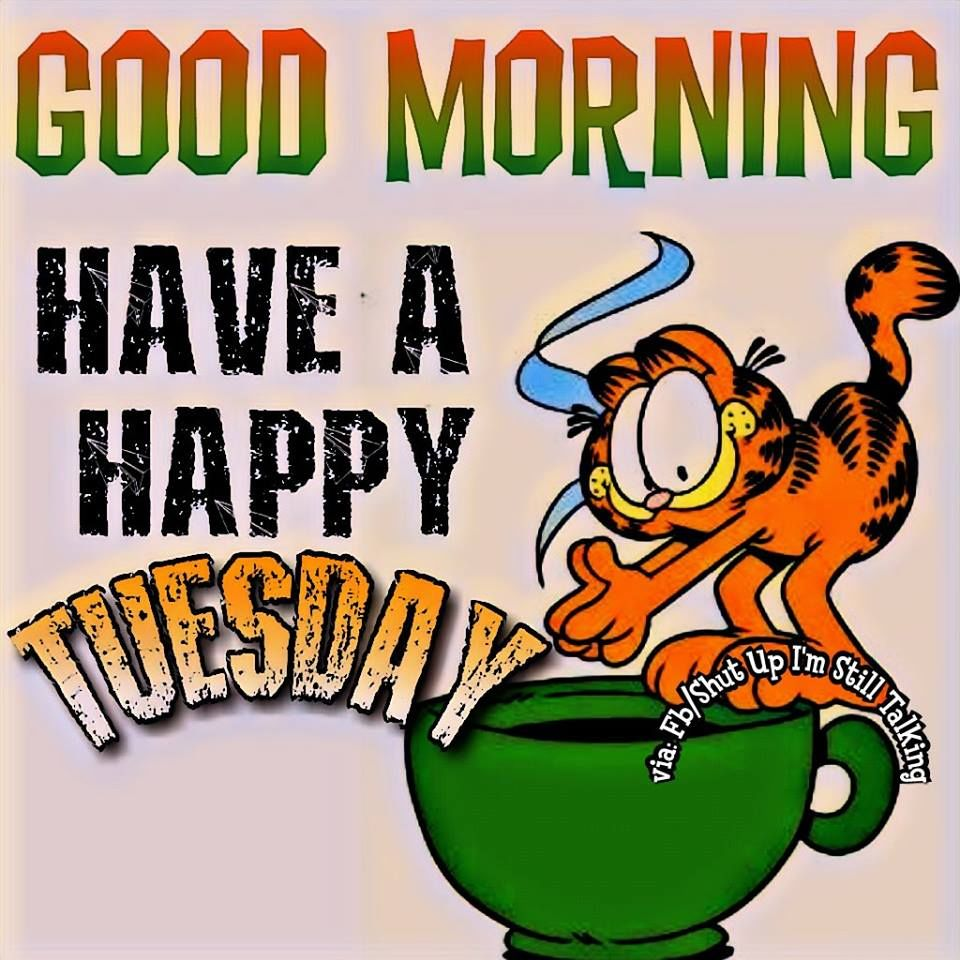 Garfield Have A Happy Tuesday Good Morning Quote Pictures.