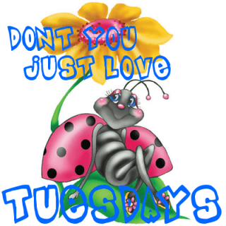 Tuesday Morning Clipart.