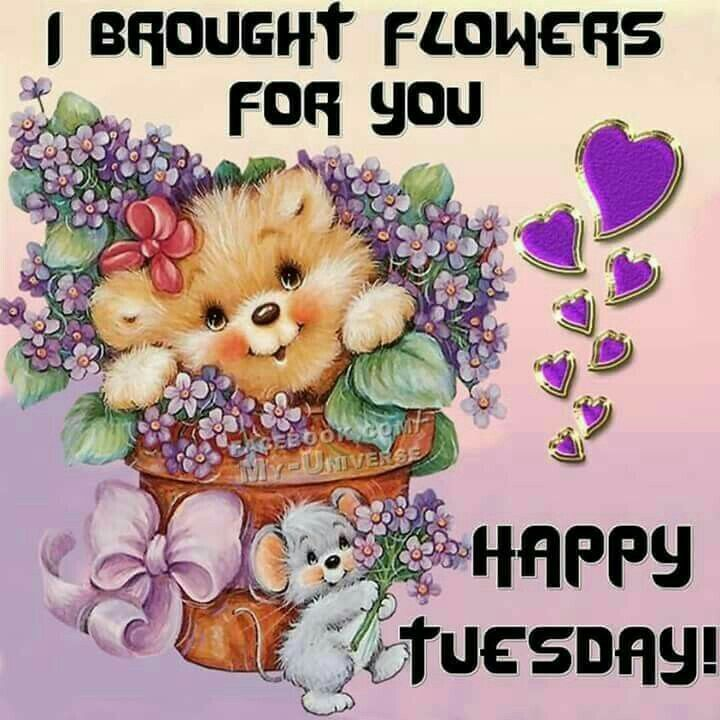 happy tuesday Tuesday blessings images on good morning jpg.
