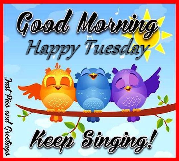 Good Morning Happy Tuesday Keep Singing Pictures, Photos.