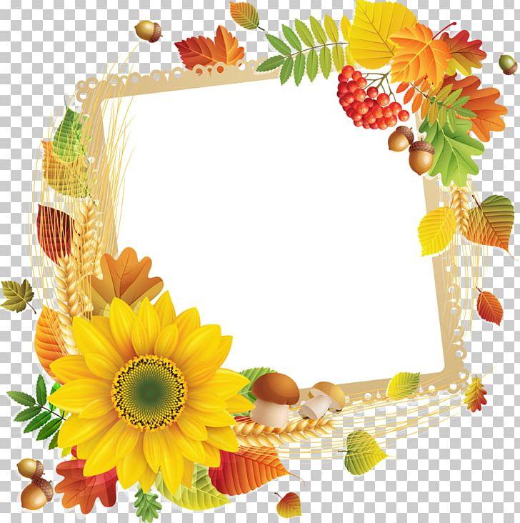 Floral Design Frames Flower Google PNG, Clipart.