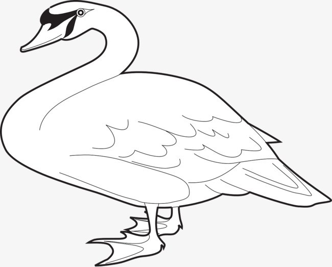 Goose clipart black and white 1 » Clipart Portal.