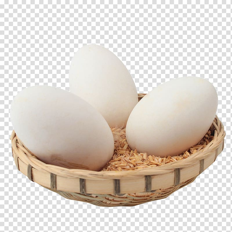 Domestic goose Egg Chicken Common ostrich Free range, Free.