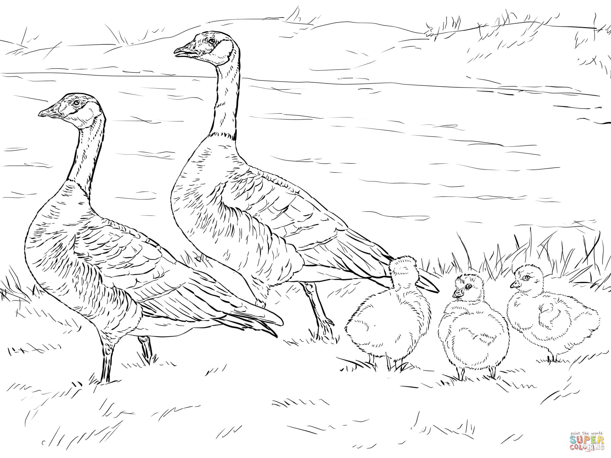 Gooses coloring pages.