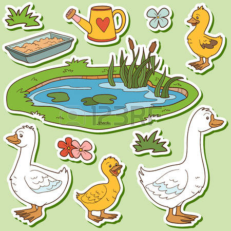 6,224 Goose Stock Illustrations, Cliparts And Royalty Free Goose.