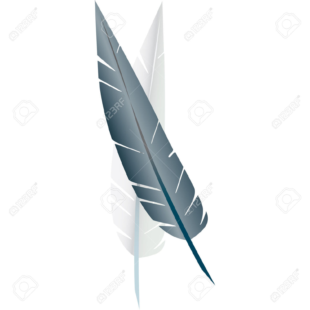 White Goose Feathers Used To Stuff Pillows Royalty Free Cliparts.