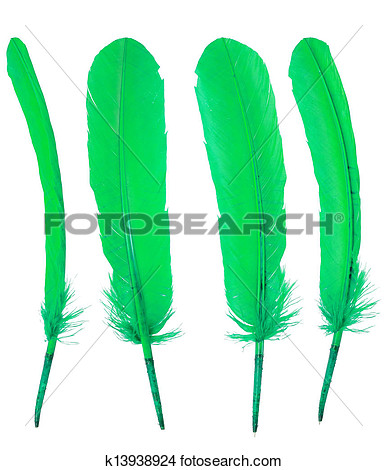Green Goose Clipart.