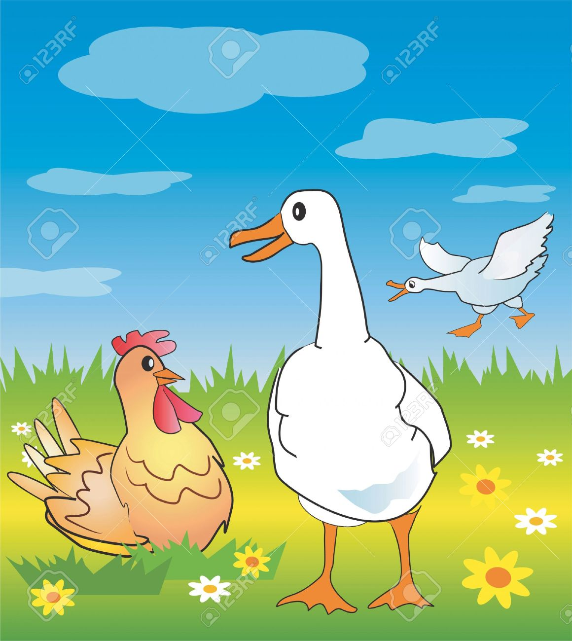 Goose And Chicken In A Spring Meadow. Vector Illustration. Royalty.
