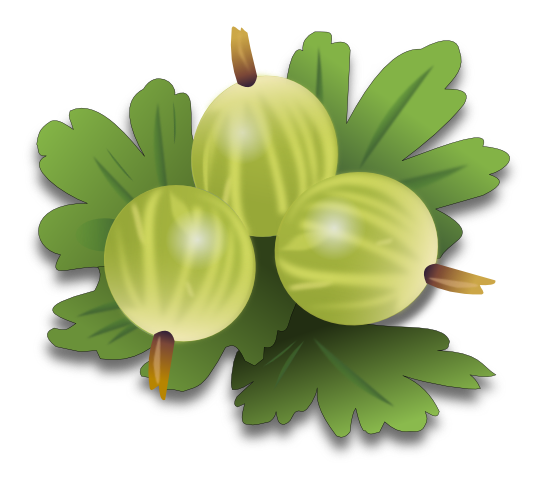 Free Green Gooseberries Clip Art.