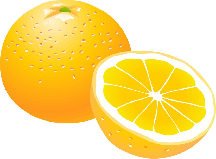 Orange Clip Art Free.