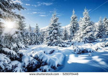 Winter Wonderland Stock Images, Royalty.