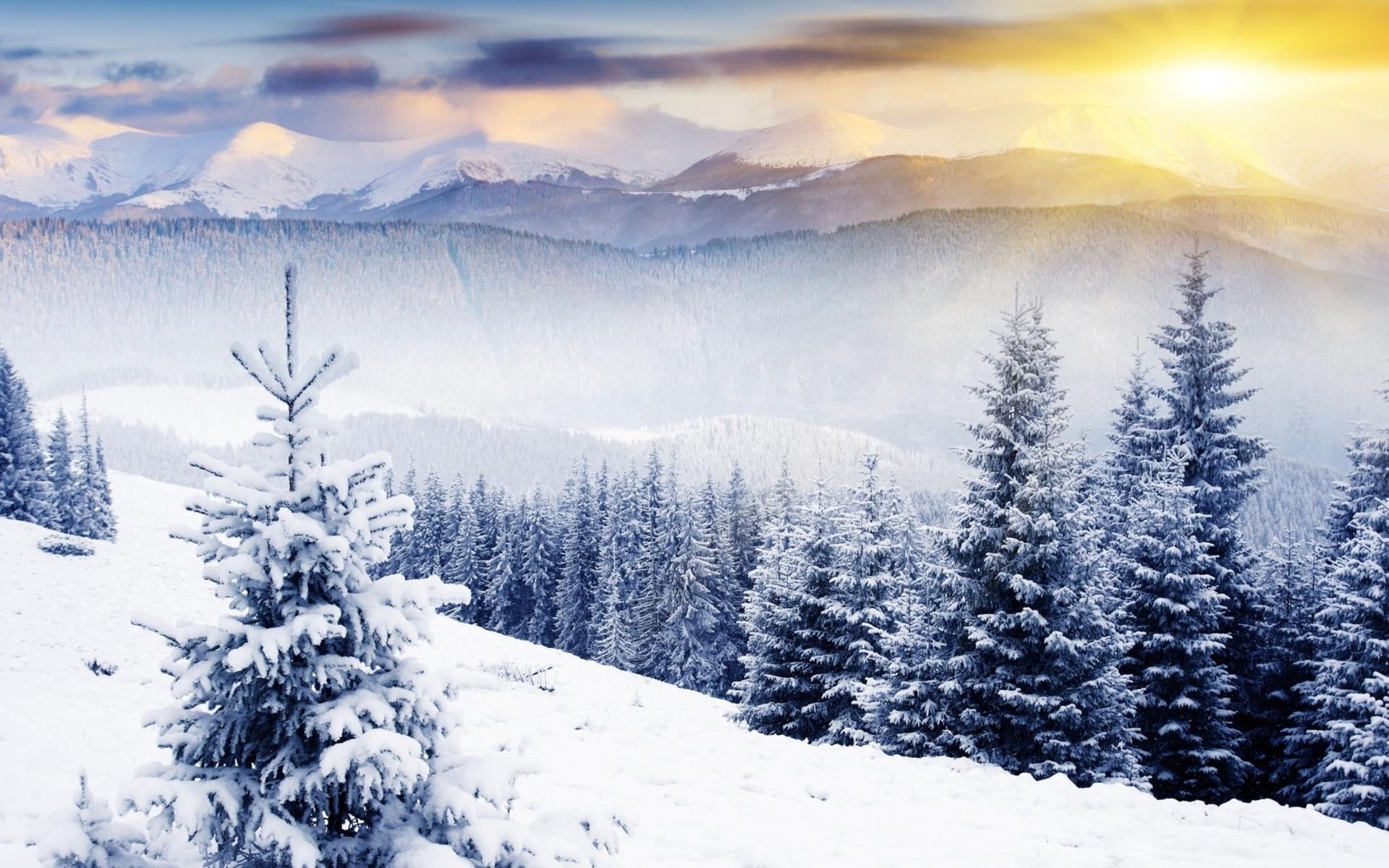 Winter Scenery #6877240.