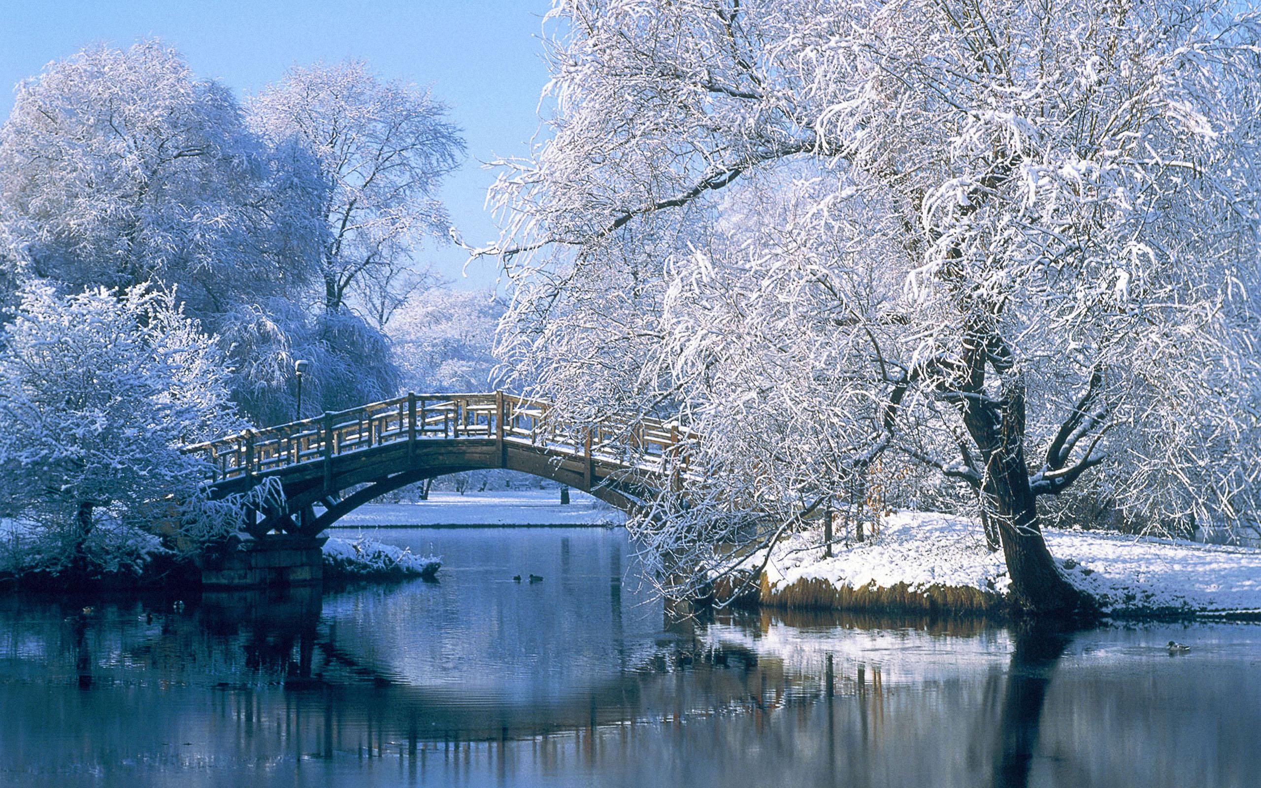 Winter mountain scenes clipart.
