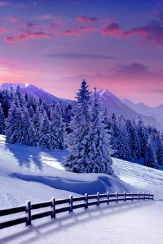 Wonderful view of a winter scene at night with full moon.