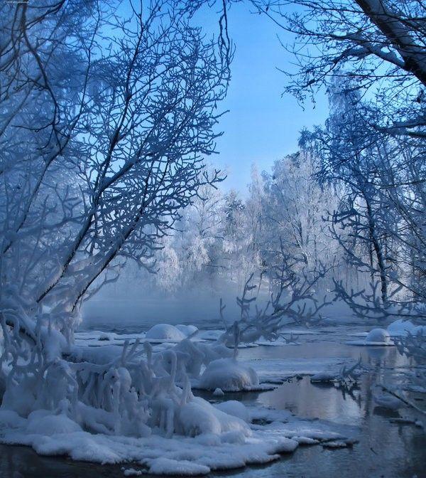 1000+ ideas about Winter Scenes on Pinterest.