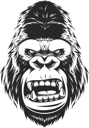 Fierce Gorilla Head premium clipart.