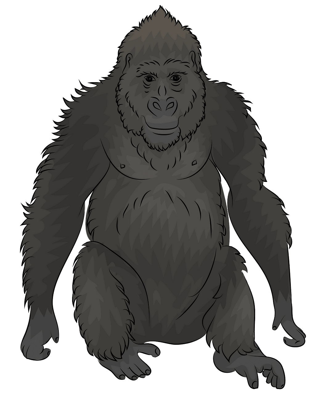 Gorilla clipart. Free download..