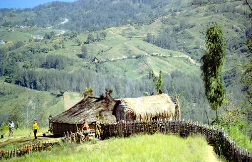 Typical Goroka Scenery.