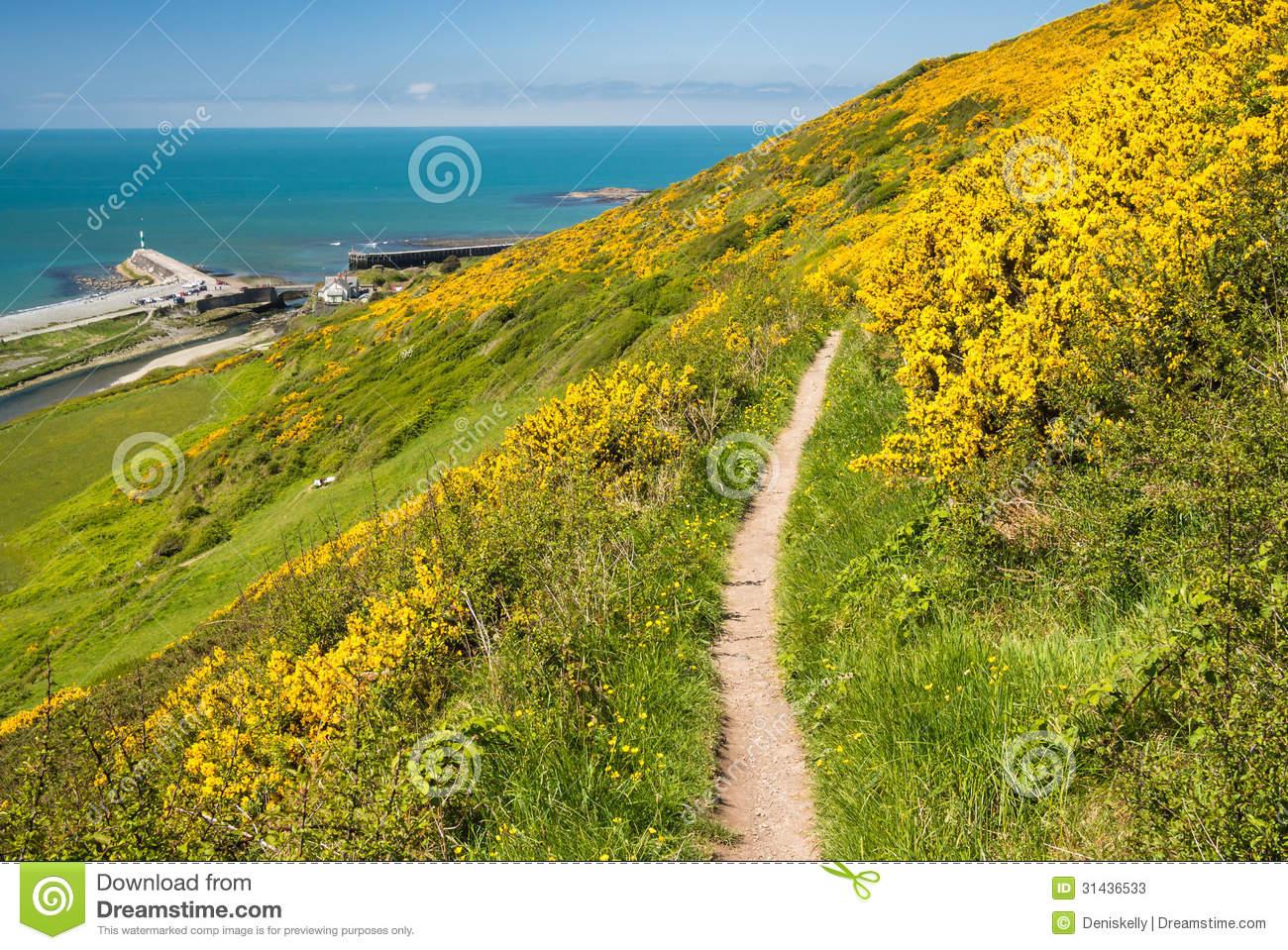 Coastal Path In Cardigan Bay, Wales Stock Photos.