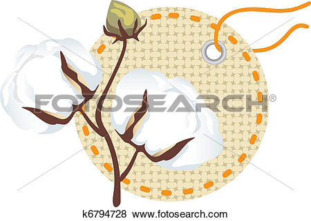 Clip Art of Cotton branch with label (Gossypium k6794728.