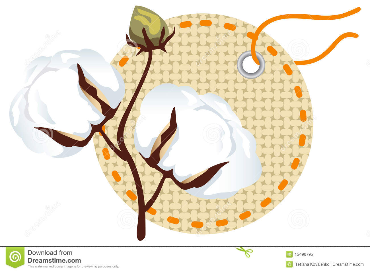 Cotton Branch With Label (Gossypium) Royalty Free Stock Photo.