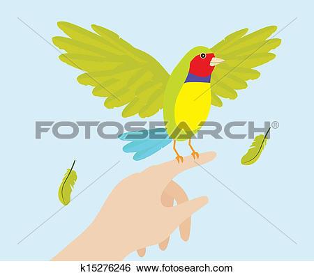 Clip Art of Lady Gouldian Finch Bird On Hand k15276246.