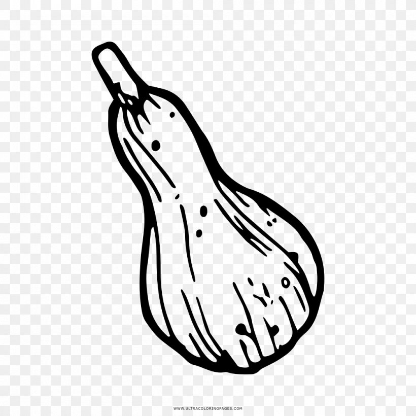 Coloring Book Drawing Gourd Line Art Clip Art, PNG.