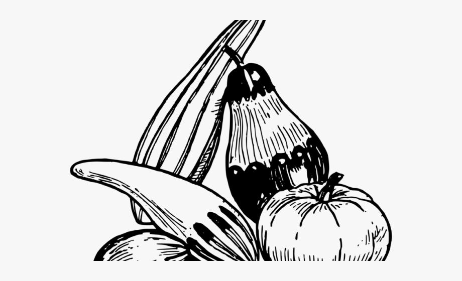 Zucchini Clipart Gourd.