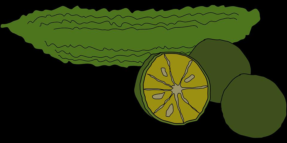 Free vector graphic: Bitter Melon, Citrus Depressa, Food.