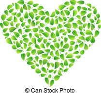Vectors Illustration of Fresh green mint leaves isolated on white.