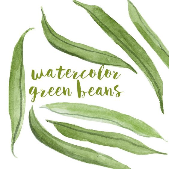 Green beans, Clip art and Watercolors on Pinterest.