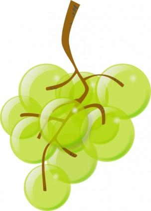 Grüne Trauben.