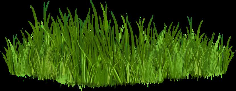 Clipart Grass & Grass Clip Art Images.
