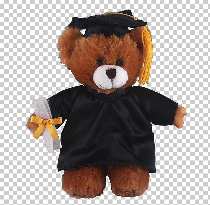Teddy bear Stuffed Animals & Cuddly Toys Plush, graduation.