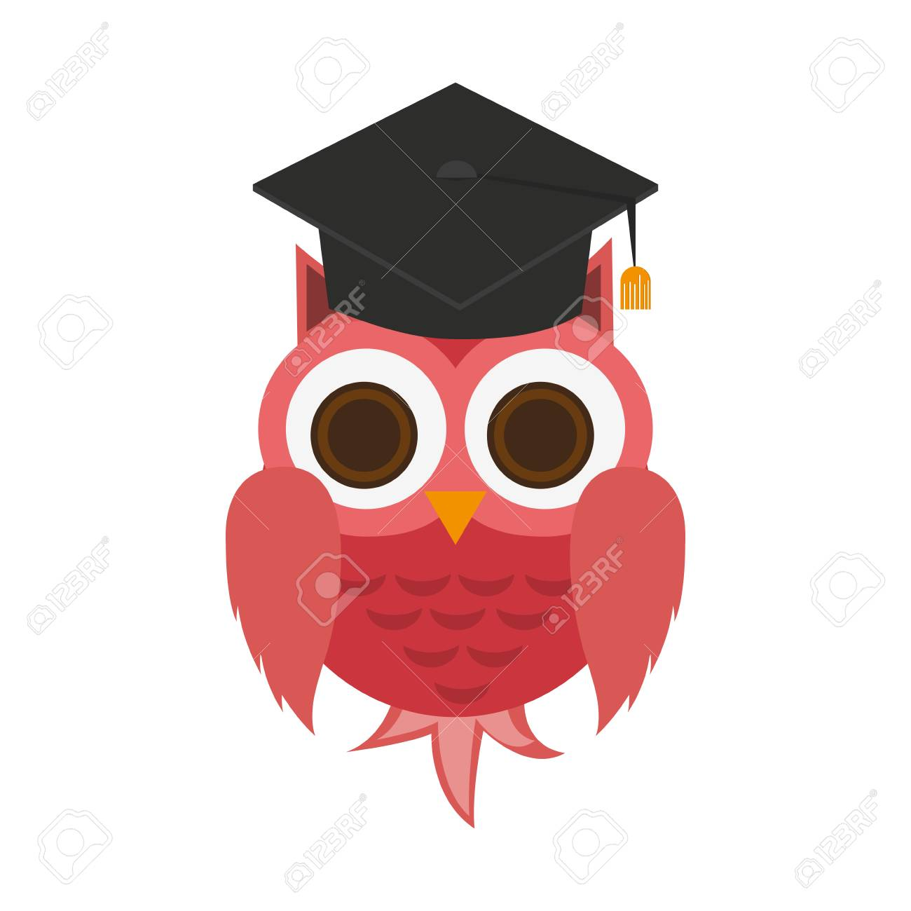 owl with graduation cap over white background. colorful design.