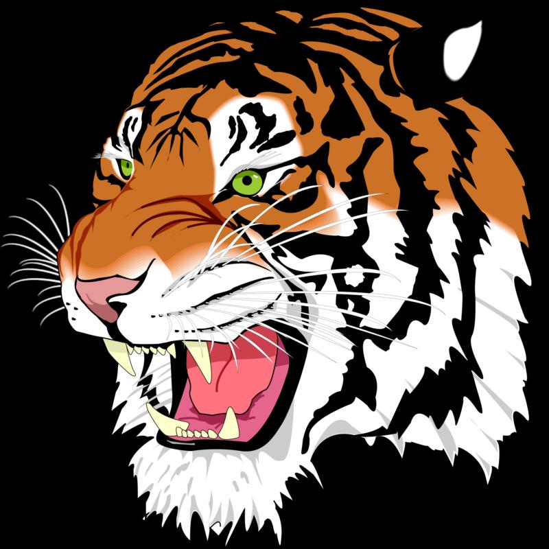 Graduation clipart tiger, Graduation tiger Transparent FREE.