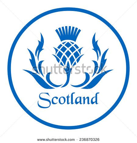 Scottish Thistle Stock Vectors & Vector Clip Art.