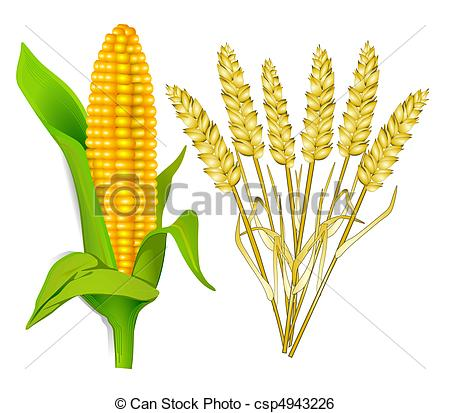 Grain Clipart and Stock Illustrations. 77,854 Grain vector EPS.