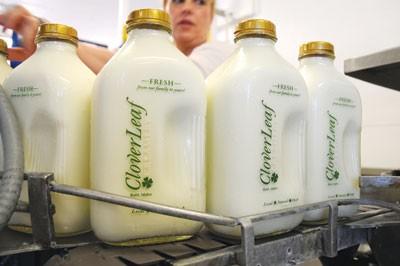 Cloverleaf Creamery Commodity.