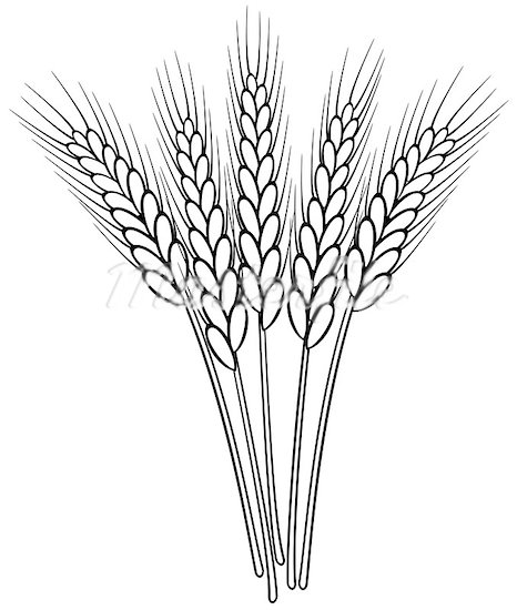 Free Grains Clipart Black And White, Download Free Clip Art.