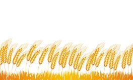 Wheat Field Clipart.