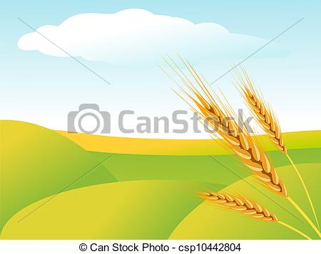 Vector Clipart of Rural landscape with wheat fields csp10442804.