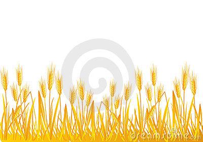 Grain Field Clipart.