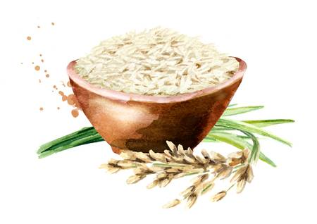 306 Long Grain Rice Stock Illustrations, Cliparts And Royalty Free.