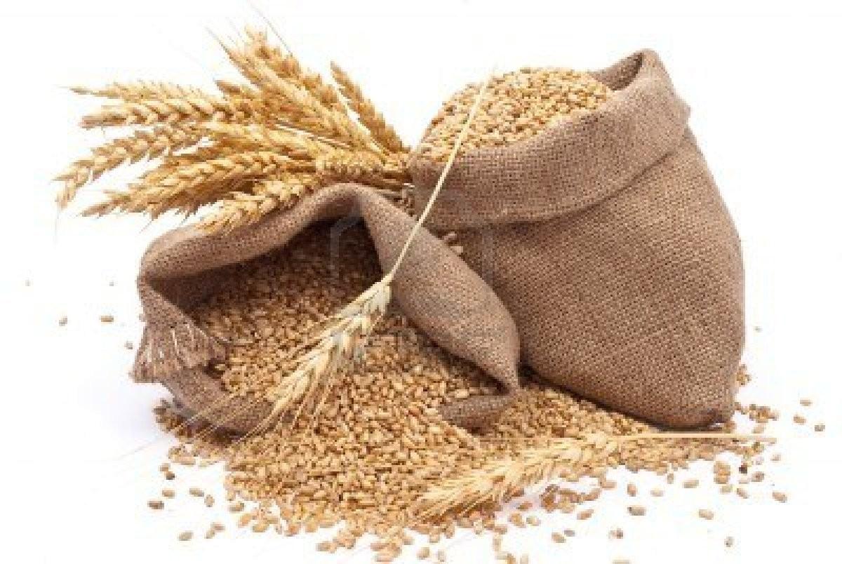 Grain PNG Photos.
