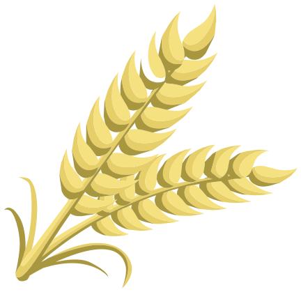 grain.