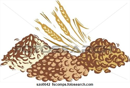 Grains clipart - Clipground