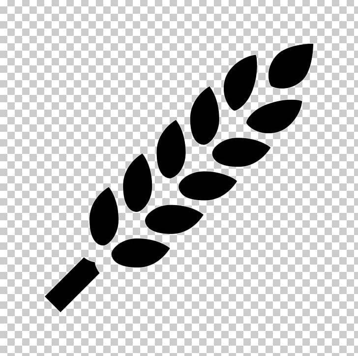 Computer Icons Wheat Allergy Food Whole Grain PNG, Clipart.