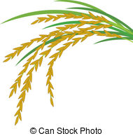 Grains rice Clipart and Stock Illustrations. 1,689 Grains rice.
