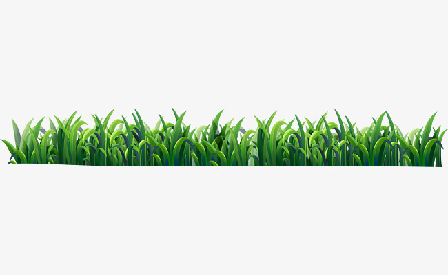 Small Fresh Green Grass, Green Vector, Grass Vector, Grassland PNG.